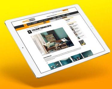Direct Paint - Website Development