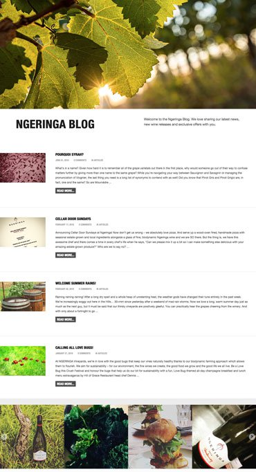Ngeringa - Website - Blog