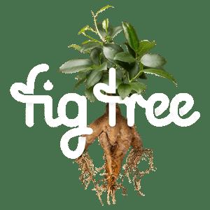 Fig Tree Digital - Growth through change