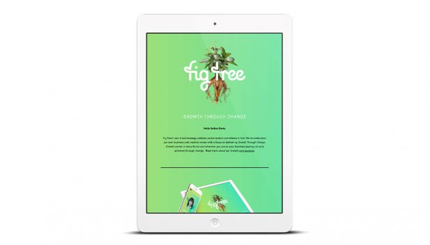 Email Marketing - HTML Email Templates Adelaide Fig Tree Digital